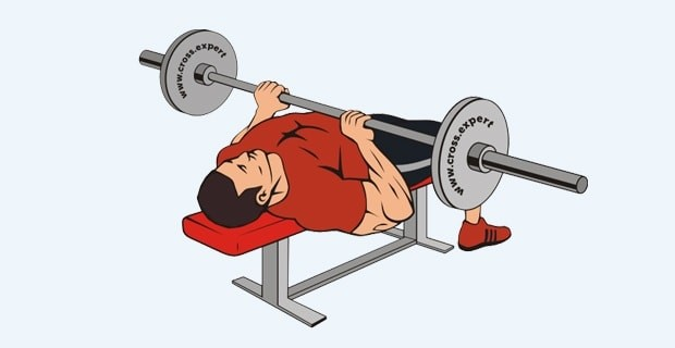 Bench Press for tricep workout