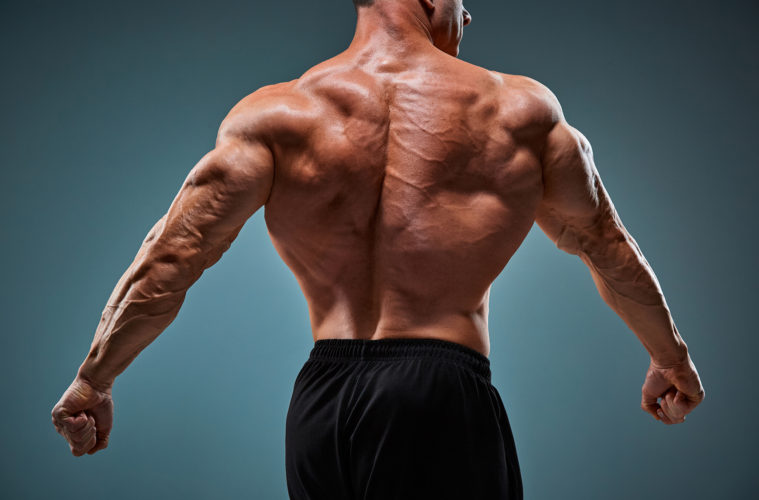 Bodyweight back exercises: how to bulk back muscles with your own weight