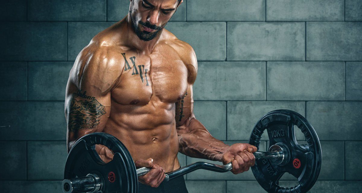 How to build upper body strength: best exercises for upper body muscles