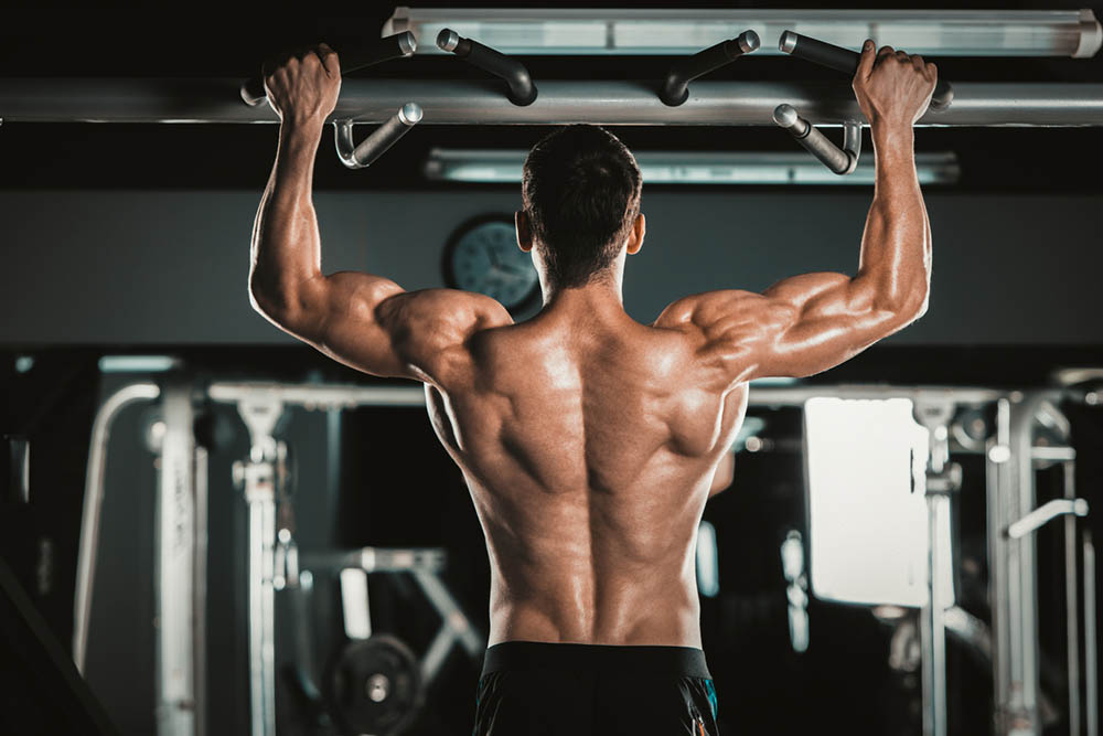 Latissimus dorsi exercises: how to bulk back muscles?