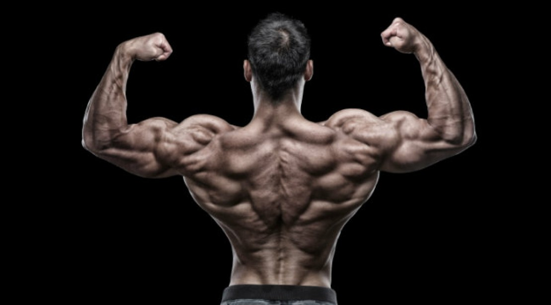 Upper back exercises – How to pump up the upper back?